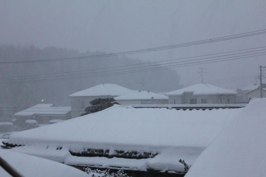 ●S12'2月1日目雪_02