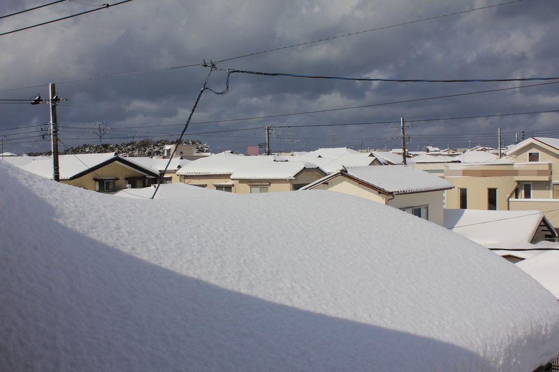●S12'2月1日目雪_09