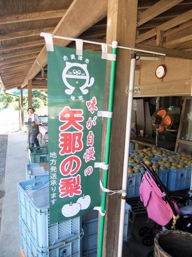2012.8.26 安西梨園 036 (2)