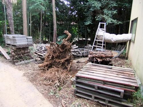 2012.9.26 柿の木伐採 089 (5)