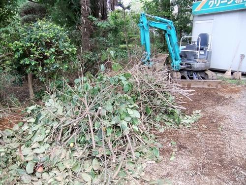 2012.9.26 柿の木伐採 089 (2)