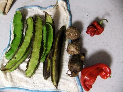 2012.10.18 自分で作る食事 015 (3)