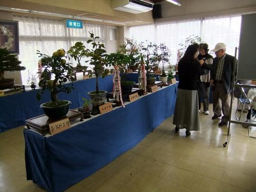 2012.10.28 鎌足地区文化祭(展示) 053 (2)