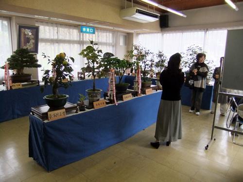 2012.10.28 鎌足地区文化祭(展示) 053 (1)