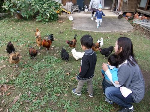 2012.12.30 動物と遊ぶ 091 (5)