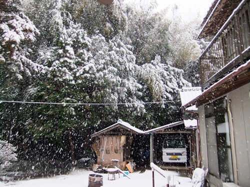 2013.1.14 初雪(定点観測) 006