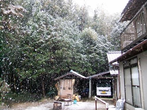 2013.1.14 初雪(定点観測) 002