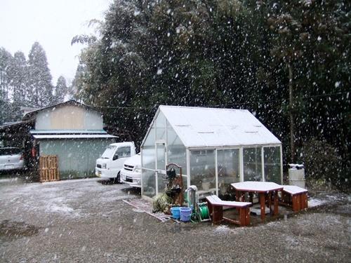 2013.1.14 初雪(定点観測) 001