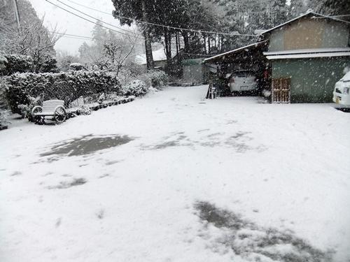 2013.1.14 初雪(定点観測) 007