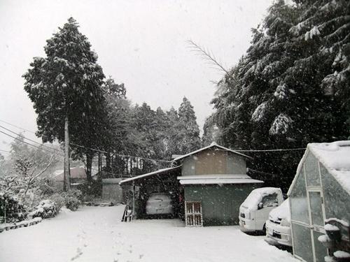 2013.1.14 初雪(定点観測)その2 004