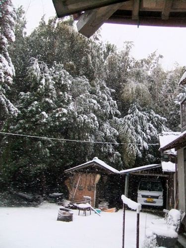 2013.1.14 初雪(定点観測)その2 003