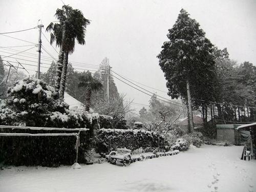 2013.1.14 初雪(定点観測)その2 001