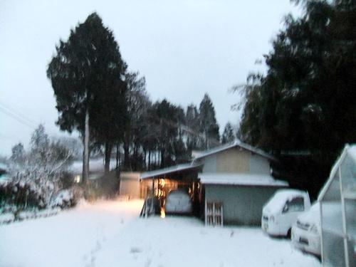 2013.1.14 初雪(定点観測)その2 008