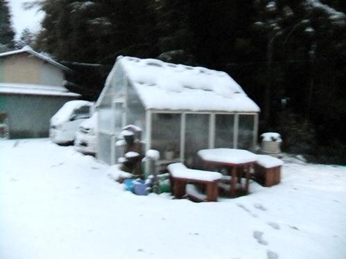 2013.1.14 初雪(定点観測)その2 007
