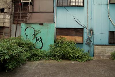 荻窪駅周辺で発見