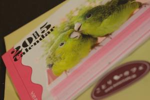 20140924鳥カレンダー