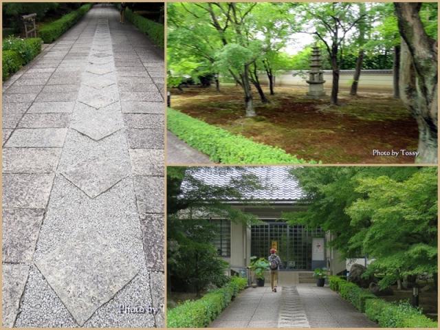 承天閣美術館への道