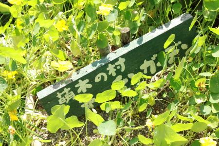 萌木の村 12.8.28.