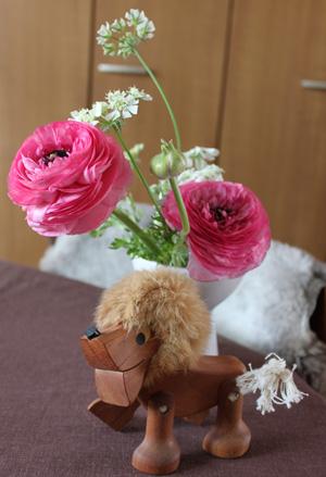 Ranunculus seeds ラナンキュラス