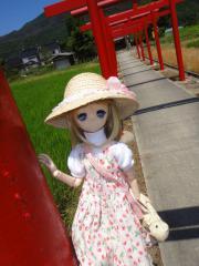 出雲&松江201208-05