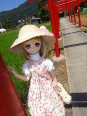 出雲&松江201208-06