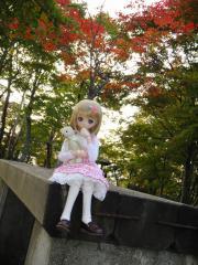 北海道201210-20