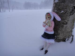 北海道201212-11