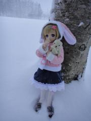 北海道201212-12