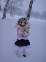 北海道201212-16