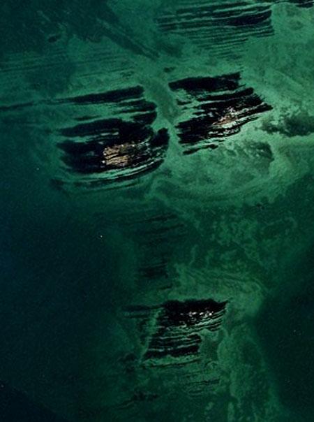 130606猿島岩礁の顔1