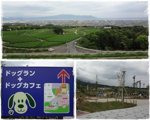 沼津ランA0513