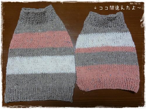 DSC02519a.jpg