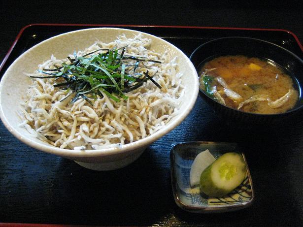 shirasudon.jpg