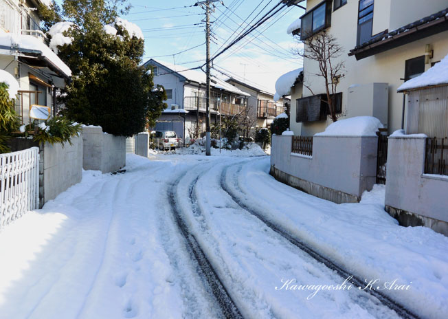 積雪の道路
