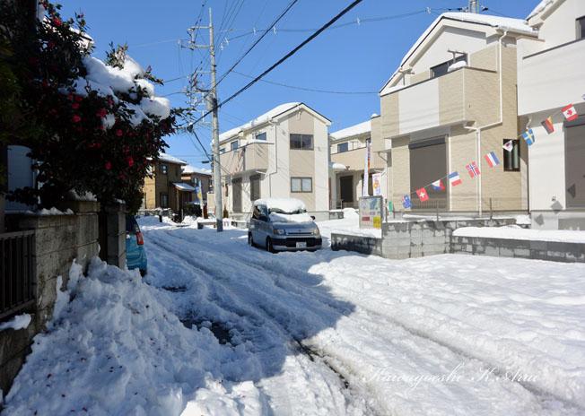 積雪の新分譲