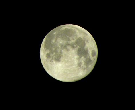 野分の空の月