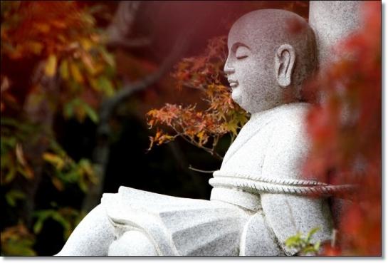 iyama20141112-1