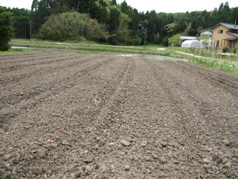 3A20畝1+001_convert_20130420200648
