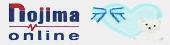 nojima online1紹介-340