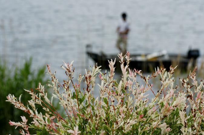 DSC08166釣り人