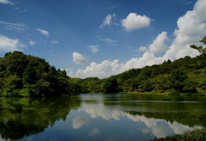DSC00438三ッ池公園