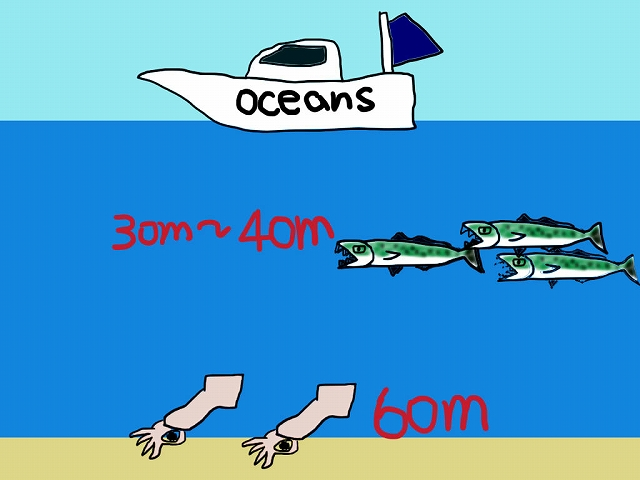 海の中の様子