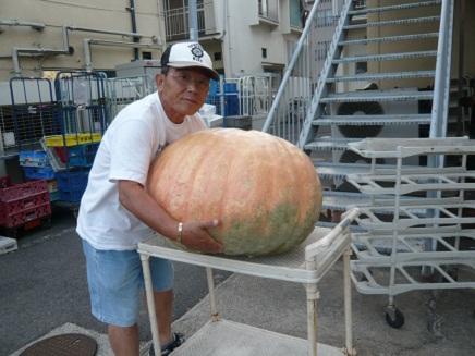 9272011かぼちゃS