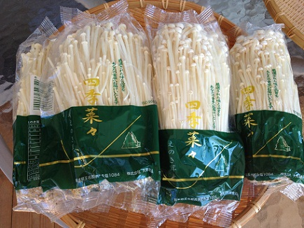 10032012エノキダケ茶S