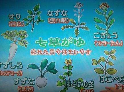 1072013七草粥S2