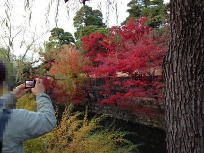 神戸ライフ:倉敷川④