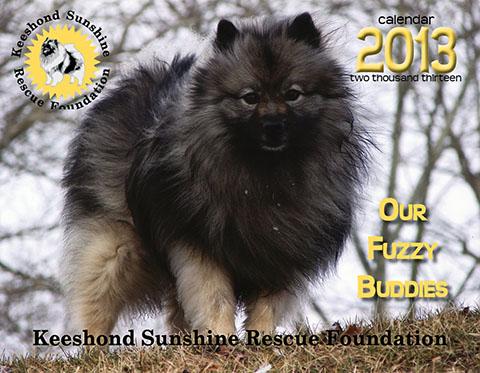 KSRF 2013 calendar