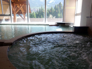 大白川温泉 しらみずの湯 (源泉かけ流し天然温泉)
