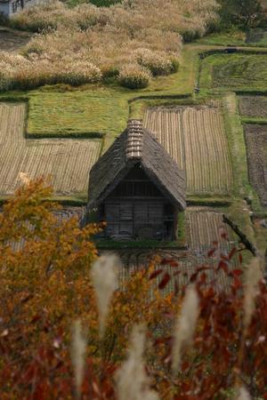 展望台から眺めた合掌小屋