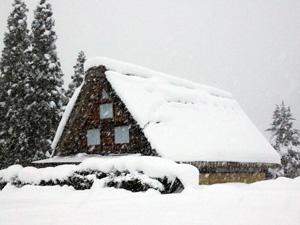 白川郷ライトアップには十分な雪がほしい